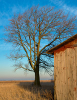 1301_Winter Barn_265-Edit